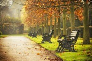 Short term apartment rentals in autumn