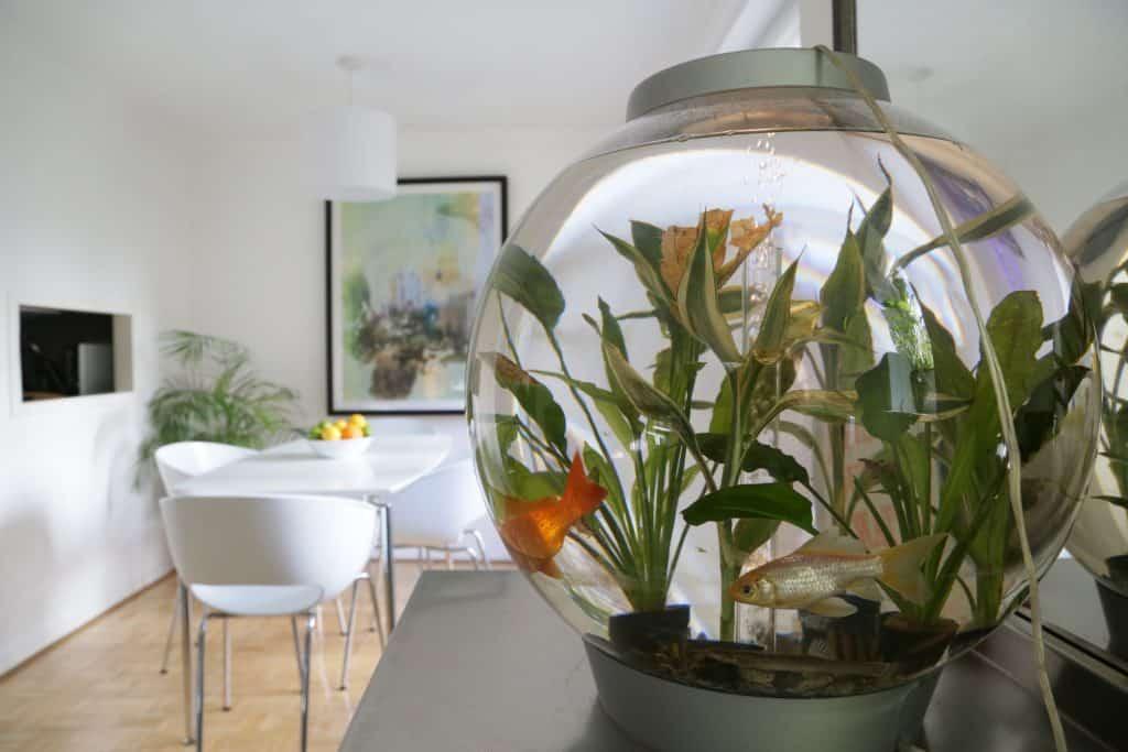 short-let-london-rental-apartments-shoreditch